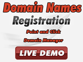 Bargain domain name registration service providers